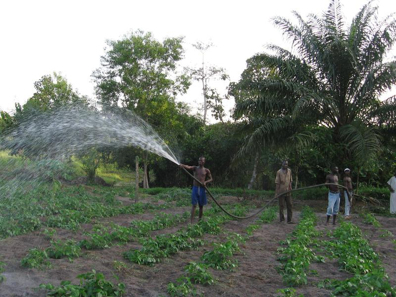 img-fishing-and-agriculture-project