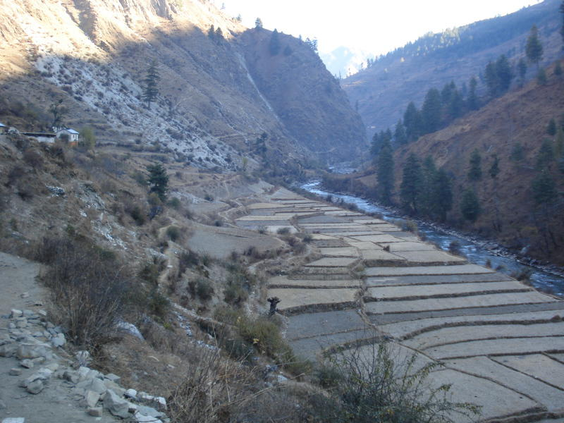 img-support-to-the-cooperatives-of-the-jumla-district
