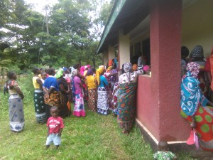img-strengthen-health-services-for-mikumi-moms-and-children